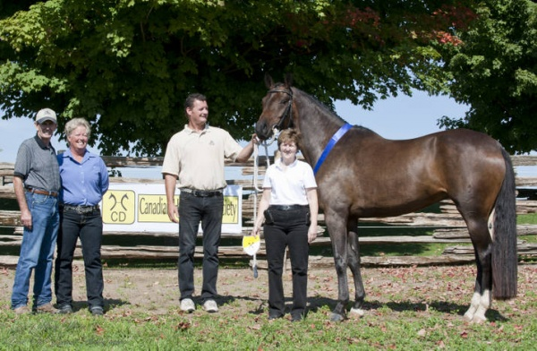 EASTERN CANADA INSPECTIONS, MARE SHOWS, FOAL SHOWS/REGISTRATIONS