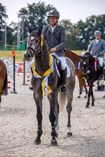Hannover's best: Eight young stallions awarded Weltmeyer and Stakkato prizes