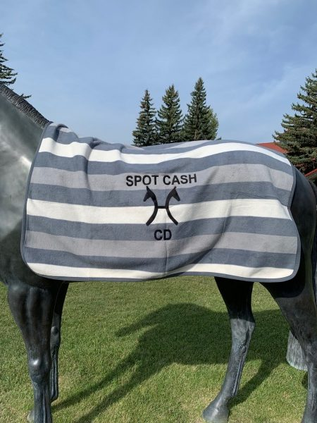 Highest Earning Stallion from this years CHS Stallion Service Auction